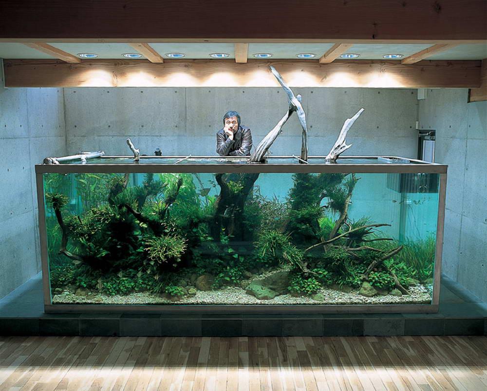 Дизайн аквариума своими руками с фото